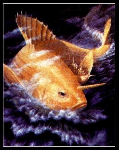 Fish Avatar